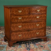 Antique English oak and oyster burl walnut chest with cross-branded top and bracket feet, c. 1830